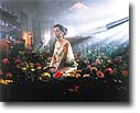Untitled (Garden) by Gregory        Crewdson